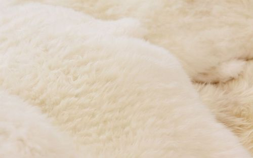 Белый мех овчины