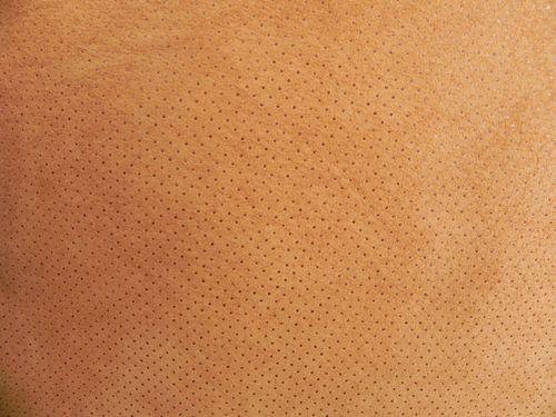 Свиная кожа